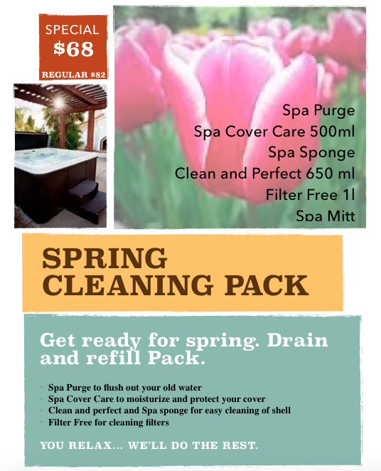 spring cleaning special